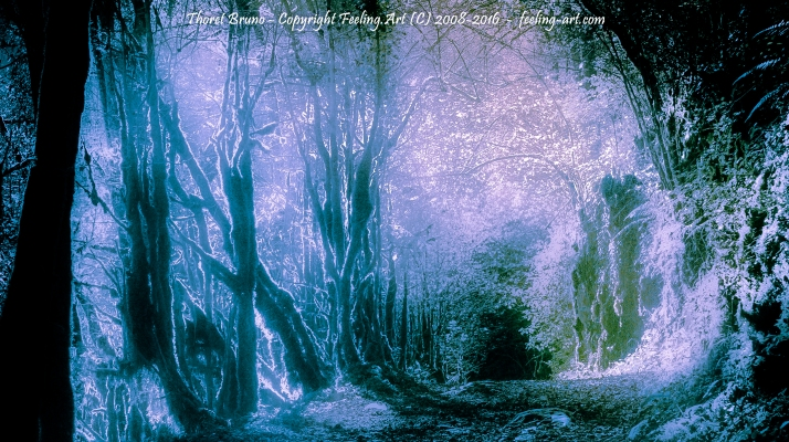 Forêt imaginaire 2 by feeling-art.com